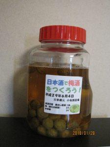 梅酒瓶単品の写真