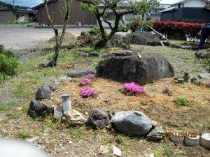駐車場の芝桜